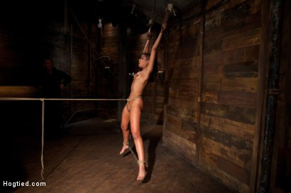 Photo number 14 from Category 5 wrist suspension<br>Caned, nipple torture and brutal crotch rope! Left to hang & suffer! shot for Hogtied on Kink.com. Featuring Skin Diamond and Isis Love in hardcore BDSM & Fetish porn.