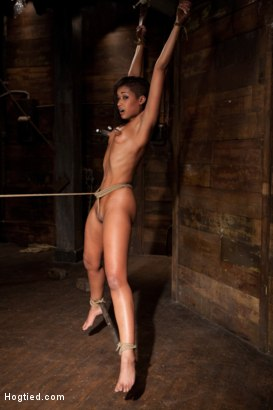Photo number 15 from Category 5 wrist suspension<br>Caned, nipple torture and brutal crotch rope! Left to hang & suffer! shot for Hogtied on Kink.com. Featuring Skin Diamond and Isis Love in hardcore BDSM & Fetish porn.