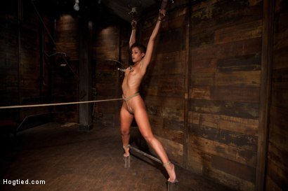 Photo number 5 from Category 5 wrist suspension<br>Caned, nipple torture and brutal crotch rope! Left to hang & suffer! shot for Hogtied on Kink.com. Featuring Skin Diamond and Isis Love in hardcore BDSM & Fetish porn.