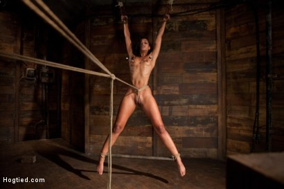 Photo number 7 from Category 5 wrist suspension<br>Caned, nipple torture and brutal crotch rope! Left to hang & suffer! shot for Hogtied on Kink.com. Featuring Skin Diamond and Isis Love in hardcore BDSM & Fetish porn.