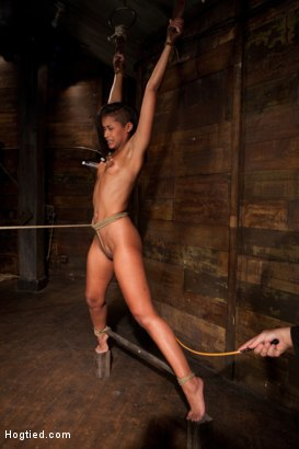 Photo number 10 from Category 5 wrist suspension<br>Caned, nipple torture and brutal crotch rope! Left to hang & suffer! shot for Hogtied on Kink.com. Featuring Skin Diamond and Isis Love in hardcore BDSM & Fetish porn.