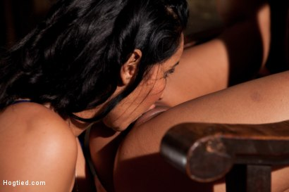 Photo number 5 from Skin gets all three holes fucked & fucked well<br>Skin made to cum so many times she even lost count shot for Hogtied on Kink.com. Featuring Skin Diamond and Isis Love in hardcore BDSM & Fetish porn.