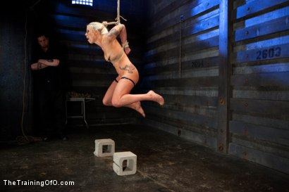 Photo number 2 from Lorelei Lee Day 4<br>Facing Fears, Taking Brutal Torture, and Extreme Orgasms shot for The Training Of O on Kink.com. Featuring Lorelei Lee in hardcore BDSM & Fetish porn.