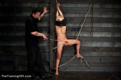 Photo number 7 from Lorelei Lee Day 4<br>Facing Fears, Taking Brutal Torture, and Extreme Orgasms shot for The Training Of O on Kink.com. Featuring Lorelei Lee in hardcore BDSM & Fetish porn.