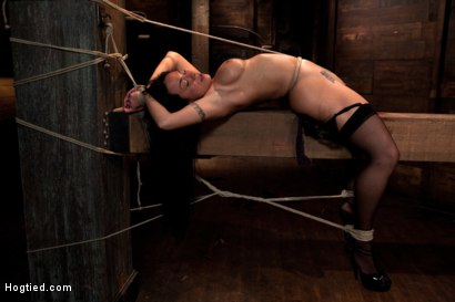Photo number 13 from Hawaiian girl is made to cum!<br>This former collegian athlete is helpless to stop the orgasms! shot for Hogtied on Kink.com. Featuring Mahina Zaltana in hardcore BDSM & Fetish porn.