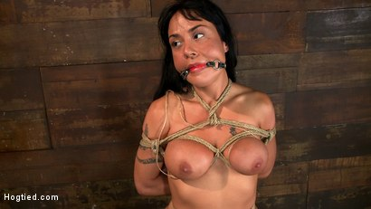 Photo number 13 from Sexy Hawaiian chick has her huge tits bound, whipped   cums hard while impaled, squirting buckets! shot for Hogtied on Kink.com. Featuring Mahina Zaltana in hardcore BDSM & Fetish porn.