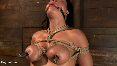 Photo number 14 from Sexy Hawaiian chick has her huge tits bound, whipped<br>cums hard while impaled, squirting buckets! shot for Hogtied on Kink.com. Featuring Mahina Zaltana in hardcore BDSM & Fetish porn.
