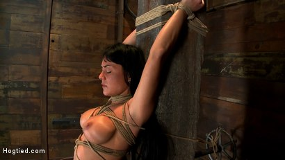 Photo number 1 from Hot sexy Hawaiian is bound to a pole, lifted to her tip toes with a brutal crotch rope. Made to cum! shot for Hogtied on Kink.com. Featuring Mahina Zaltana in hardcore BDSM & Fetish porn.
