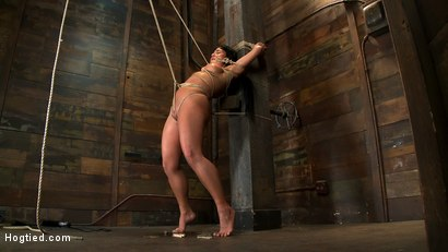 Photo number 13 from Hot sexy Hawaiian is bound to a pole, lifted to her tip toes with a brutal crotch rope. Made to cum! shot for Hogtied on Kink.com. Featuring Mahina Zaltana in hardcore BDSM & Fetish porn.