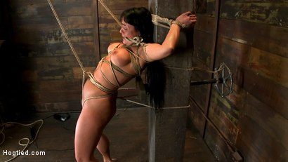 Photo number 15 from Hot sexy Hawaiian is bound to a pole, lifted to her tip toes with a brutal crotch rope. Made to cum! shot for Hogtied on Kink.com. Featuring Mahina Zaltana in hardcore BDSM & Fetish porn.