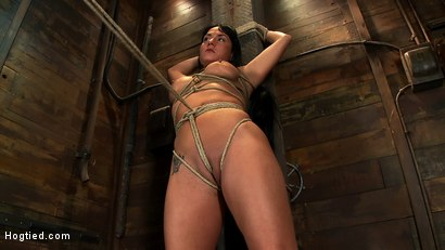 Photo number 4 from Hot sexy Hawaiian is bound to a pole, lifted to her tip toes with a brutal crotch rope. Made to cum! shot for Hogtied on Kink.com. Featuring Mahina Zaltana in hardcore BDSM & Fetish porn.