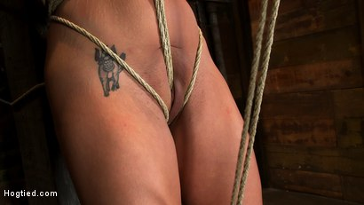 Photo number 8 from Hot sexy Hawaiian is bound to a pole, lifted to her tip toes with a brutal crotch rope. Made to cum! shot for Hogtied on Kink.com. Featuring Mahina Zaltana in hardcore BDSM & Fetish porn.