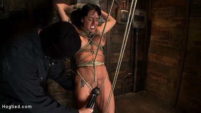 Photo number 9 from Hot sexy Hawaiian is bound to a pole, lifted to her tip toes with a brutal crotch rope. Made to cum! shot for Hogtied on Kink.com. Featuring Mahina Zaltana in hardcore BDSM & Fetish porn.