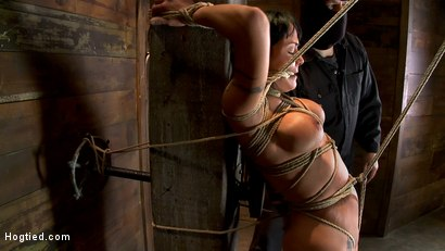 Photo number 10 from Hot sexy Hawaiian is bound to a pole, lifted to her tip toes with a brutal crotch rope. Made to cum! shot for Hogtied on Kink.com. Featuring Mahina Zaltana in hardcore BDSM & Fetish porn.
