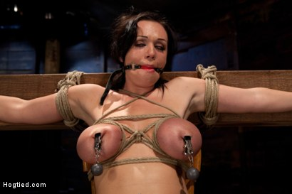 Photo number 13 from Big titted 21yr old in her first ever hardcore bondage shoot<br> Once helpless we abuse those tits. shot for Hogtied on Kink.com. Featuring Chloe Reece Ryder in hardcore BDSM & Fetish porn.