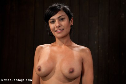 Photo number 15 from Bangin' Brunette Broad -  shot for devicebondage on Kink.com. Featuring Beretta James in hardcore BDSM & Fetish porn.