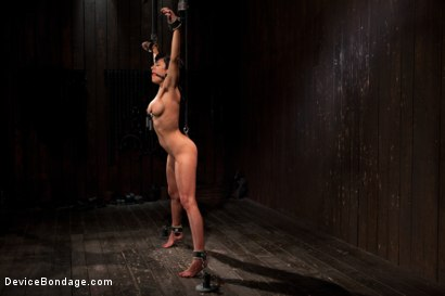 Photo number 4 from Bangin' Brunette Broad -  shot for Device Bondage on Kink.com. Featuring Beretta James in hardcore BDSM & Fetish porn.