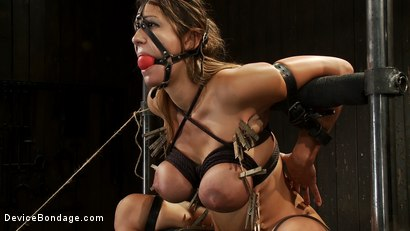 Photo number 6 from Bound tight to be ass fucked deep and hard. shot for Device Bondage on Kink.com. Featuring James Deen and Trina Michaels in hardcore BDSM & Fetish porn.