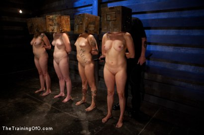 Photo number 5 from 4 Girl Auditions<br>Day 1 shot for The Training Of O on Kink.com. Featuring Akira Raine, Sofia Lauryn, Maestro, Rozen Debowe, Odile and Maestro Stefanos in hardcore BDSM & Fetish porn.