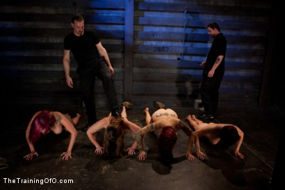 Photo number 2 from Four Girl Auditions-Day 2<br>Keeping Their Eyes on the Prize shot for The Training Of O on Kink.com. Featuring Akira Raine, Sofia Lauryn, Rozen Debowe and Odile in hardcore BDSM & Fetish porn.
