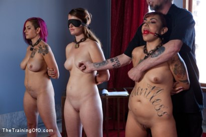 Photo number 4 from Four Girl Auditions-Day 2<br>Keeping Their Eyes on the Prize shot for The Training Of O on Kink.com. Featuring Akira Raine, Sofia Lauryn, Rozen Debowe and Odile in hardcore BDSM & Fetish porn.
