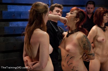 Photo number 2 from 4 Girl Auditions<br>Sexual Testing  shot for The Training Of O on Kink.com. Featuring Akira Raine, Sofia Lauryn, Rozen Debowe, Odile and James Deen in hardcore BDSM & Fetish porn.
