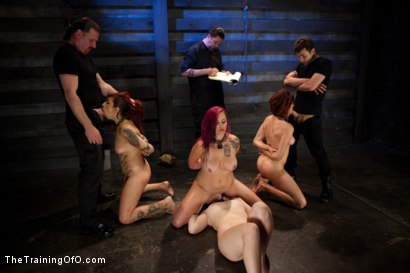 Photo number 4 from 4 Girl Auditions<br>Sexual Testing  shot for The Training Of O on Kink.com. Featuring Akira Raine, Sofia Lauryn, Rozen Debowe, Odile and James Deen in hardcore BDSM & Fetish porn.