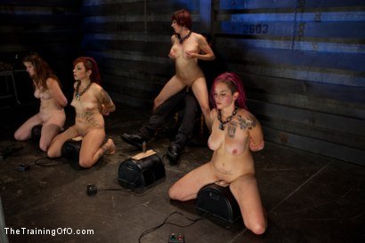 Photo number 8 from 4 Girl Auditions-Day 4<br>Blowjobs, Fucking, and a 4 Girl Sybian Ride shot for The Training Of O on Kink.com. Featuring Akira Raine, Sofia Lauryn, Maestro, Rozen Debowe and Odile in hardcore BDSM & Fetish porn.
