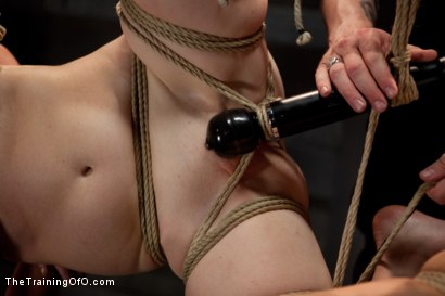 Photo number 14 from 4 Girl Auditions-Day 4<br>Blowjobs, Fucking, and a 4 Girl Sybian Ride shot for The Training Of O on Kink.com. Featuring Akira Raine, Sofia Lauryn, Maestro, Rozen Debowe and Odile in hardcore BDSM & Fetish porn.