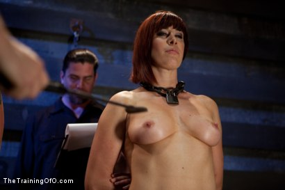 Photo number 1 from 4 Girl Auditions-Day 4<br>Blowjobs, Fucking, and a 4 Girl Sybian Ride shot for The Training Of O on Kink.com. Featuring Akira Raine, Sofia Lauryn, Maestro, Rozen Debowe and Odile in hardcore BDSM & Fetish porn.
