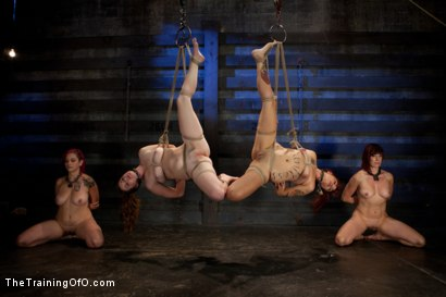 Photo number 2 from 4 Girl Auditions-Day 4  Blowjobs, Fucking, and a 4 Girl Sybian Ride shot for The Training Of O on Kink.com. Featuring Akira Raine, Sofia Lauryn, Maestro, Rozen Debowe and Odile in hardcore BDSM & Fetish porn.