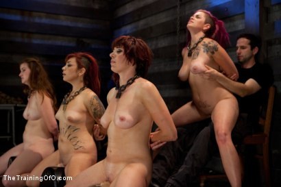 Photo number 7 from 4 Girl Auditions-Day 4<br>Blowjobs, Fucking, and a 4 Girl Sybian Ride shot for The Training Of O on Kink.com. Featuring Akira Raine, Sofia Lauryn, Maestro, Rozen Debowe and Odile in hardcore BDSM & Fetish porn.