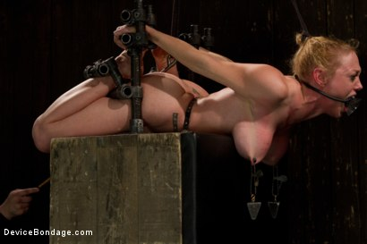 Photo number 7 from Bondage Babe Suffers for Your Pleasure shot for Device Bondage on Kink.com. Featuring Dee Williams in hardcore BDSM & Fetish porn.