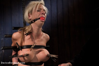 Photo number 7 from Petite Blonde and ready for some Wrong - helpless busty girl is made to cum hard shot for Device Bondage on Kink.com. Featuring Kaylee Hilton in hardcore BDSM & Fetish porn.