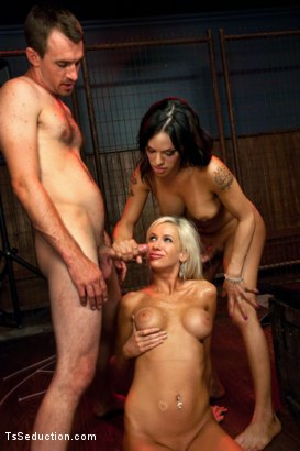 Photo number 14 from The Gentleman's Club: Don't Fuck with the Dancers shot for TS Seduction on Kink.com. Featuring TS Foxxy, Kaylee Hilton and Dietrich Cyrus in hardcore BDSM & Fetish porn.