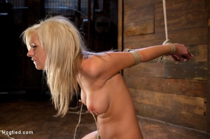 Photo number 14 from Hot blonde with amazing body, has nipples tied and weighted, gagged & made to cum like a common slut shot for Hogtied on Kink.com. Featuring Kaylee Hilton in hardcore BDSM & Fetish porn.