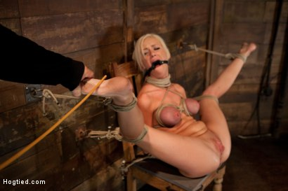 Photo number 7 from Sexy blond with pig tails, braces & big tits<br>Abused made to cum with vibrator & fingers, Helpless shot for Hogtied on Kink.com. Featuring Kaylee Hilton in hardcore BDSM & Fetish porn.