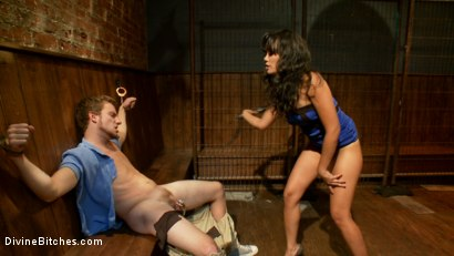 Photo number 14 from Cuckold Gangbang shot for Divine Bitches on Kink.com. Featuring Master Avery, Mickey Mod, Annie Cruz, Parker London, Wolf Hudson and Sebastian Keys in hardcore BDSM & Fetish porn.