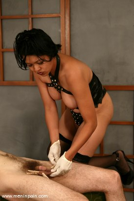 Photo number 6 from Mika Tan and Charlie Hustle shot for Men In Pain on Kink.com. Featuring Mika Tan and Charlie Hustle in hardcore BDSM & Fetish porn.