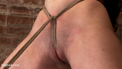 "Photo number 15 from Local ""girl next door"" bound up tight & helpless, flogged, nipple clamped, made to suck cock, & cum! shot for Hogtied on Kink.com. Featuring Serena Blair in hardcore BDSM & Fetish porn."