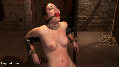 "Photo number 6 from Local ""girl next door"" bound up tight & helpless, flogged, nipple clamped, made to suck cock, & cum! shot for Hogtied on Kink.com. Featuring Serena Blair in hardcore BDSM & Fetish porn."
