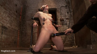 "Photo number 9 from Local ""girl next door"" bound up tight & helpless, flogged, nipple clamped, made to suck cock, & cum! shot for Hogtied on Kink.com. Featuring Serena Blair in hardcore BDSM & Fetish porn."