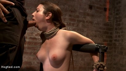 "Local ""girl next door"" bound up tight & helpless, flogged, nipple clamped, made to suck cock, & cum!"