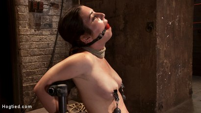 "Photo number 7 from Local ""girl next door"" bound up tight & helpless, flogged, nipple clamped, made to suck cock, & cum! shot for Hogtied on Kink.com. Featuring Serena Blair in hardcore BDSM & Fetish porn."