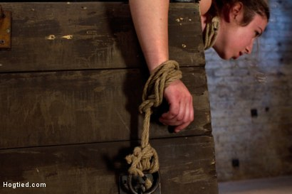 Photo number 3 from Girl next door bound ass up. Double penetrated<br>Skull fucked & caned, vibrated 2 multiple orgasms  shot for Hogtied on Kink.com. Featuring Serena Blair in hardcore BDSM & Fetish porn.