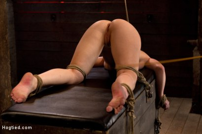 Photo number 7 from Girl next door bound ass up. Double penetrated<br>Skull fucked & caned, vibrated 2 multiple orgasms  shot for Hogtied on Kink.com. Featuring Serena Blair in hardcore BDSM & Fetish porn.
