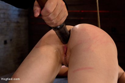 Photo number 8 from Girl next door bound ass up. Double penetrated<br>Skull fucked & caned, vibrated 2 multiple orgasms  shot for Hogtied on Kink.com. Featuring Serena Blair in hardcore BDSM & Fetish porn.