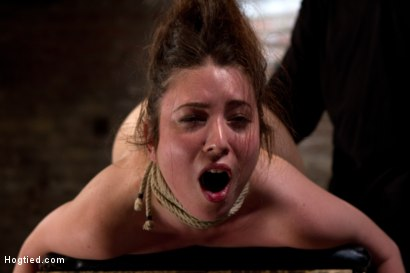 Photo number 10 from Girl next door bound ass up. Double penetrated<br>Skull fucked & caned, vibrated 2 multiple orgasms  shot for Hogtied on Kink.com. Featuring Serena Blair in hardcore BDSM & Fetish porn.