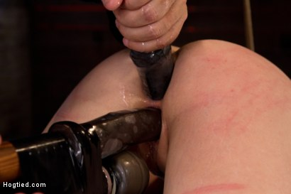 Photo number 12 from Girl next door bound ass up. Double penetrated<br>Skull fucked & caned, vibrated 2 multiple orgasms  shot for Hogtied on Kink.com. Featuring Serena Blair in hardcore BDSM & Fetish porn.