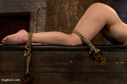 Photo number 4 from Girl next door bound ass up. Double penetrated<br>Skull fucked & caned, vibrated 2 multiple orgasms  shot for Hogtied on Kink.com. Featuring Serena Blair in hardcore BDSM & Fetish porn.